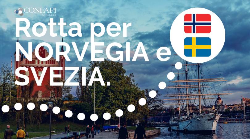 Ambasciatori internazionalizzazione: esporta in Norvegia e Svezia